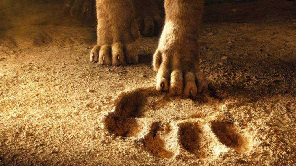 cinema - the lion king